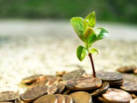 如松:投资是什么样子?