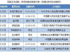 """尊嘉:年底再迎港股IPO发行潮 没有策略可能错失""""几个亿"""""""