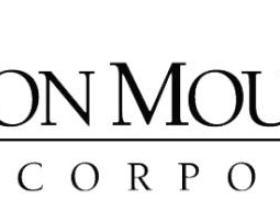 存储和信息管理公司:爱恩铁山Iron Mountain(IRM)