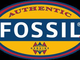 时尚配件设计&零售商:福斯尔(化石集团)Fossil Group(FOSL)