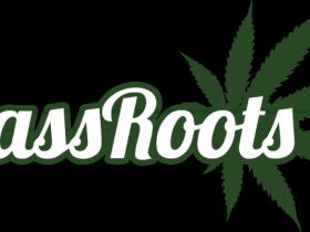 医用及娱乐吸食大麻社交网络:MassRoots, Inc. (MSRT)