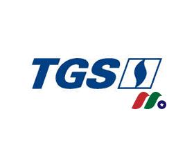 阿根廷最大燃气公用事业公司:南部燃气Transportadora de Gas(TGS)
