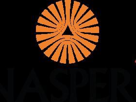 腾讯大股东:纳斯帕斯(南非报业)Naspers Limited(NPSNY)