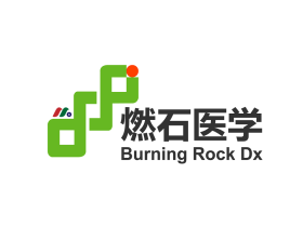 中概股:燃石医学Burning Rock Biotech Ltd.(BNR)