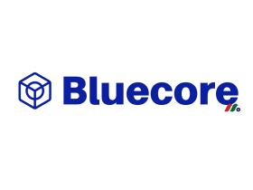触发式邮件推送服务提供商:Bluecore, Inc.