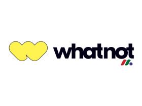 收藏品直播平台和电子商务市场:Whatnot Inc.