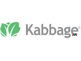 美国运通旗下现金流管理解决方案金融科技公司:Kabbage, Inc.
