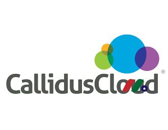 软件公司:卡利都斯软件Callidus Software(CALD)