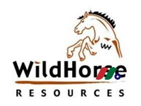 新股上市:石油天然气公司WildHorse Resource Development(WRD)