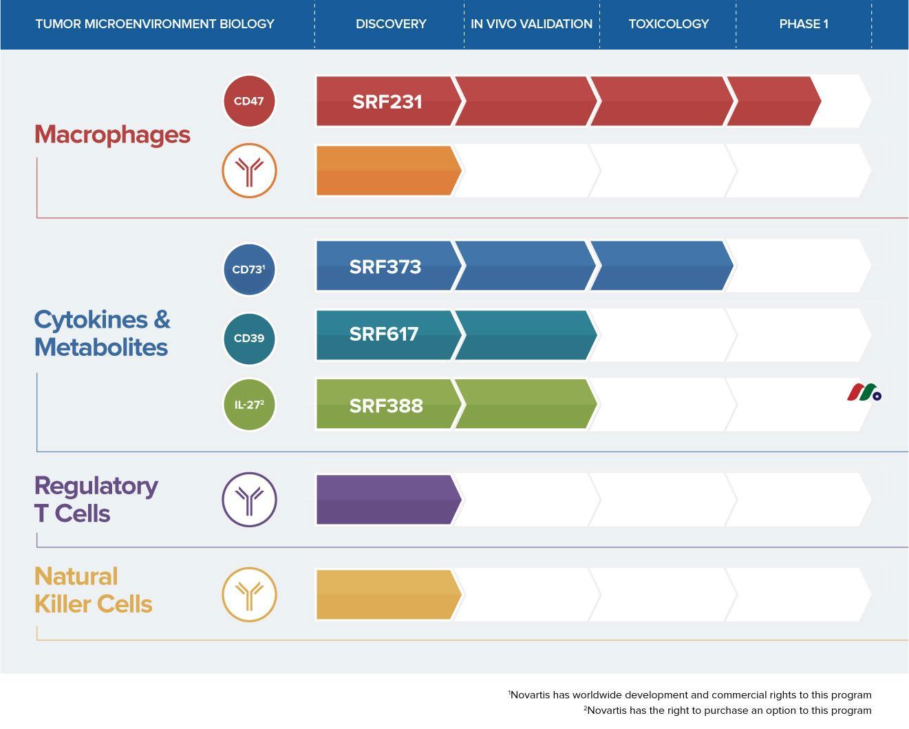 免疫肿瘤学公司:Surface Oncology, Inc.(SURF)